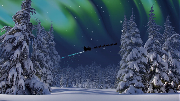 b2bcards corporate christmas eacrd ref:B2BV-243308310, Aurora,Trees,Snow, Blue,White