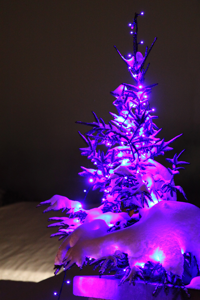 b2bcards corporate christmas eacrd ref:b2b-ecards-christmas-tree-purple-pink-745.jpg, Christmas Tree, Purple,Pink