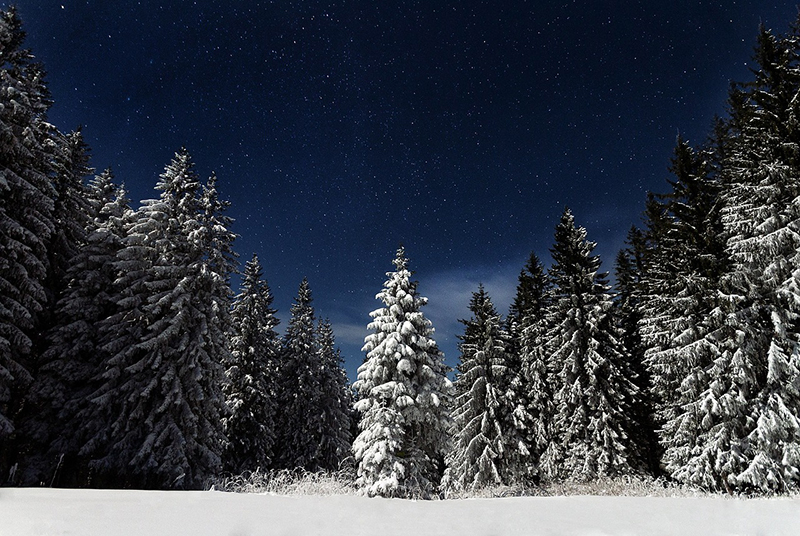 b2bcards corporate christmas eacrd ref:b2b-ecards-scenery-snow-colours-1022.jpg, Scenery,Snow, Colours