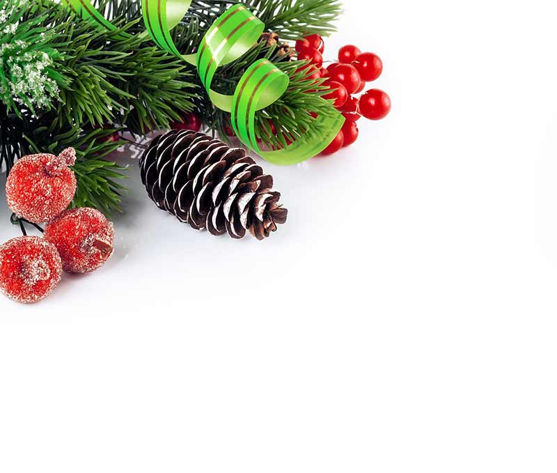 b2bcards corporate christmas eacrd ref:b2bcards-wreath-cones-ribbons-berries.jpg, Wreaths,Fir,Cones,Ribbons, Red,White,Green